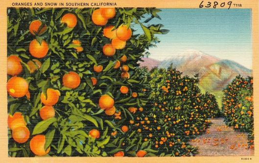 Oranges_and_Snow_in_Southern_California_(63809)