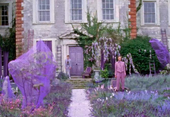 Lavender 6.png