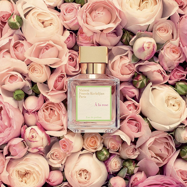 MFK A la rose.jpg